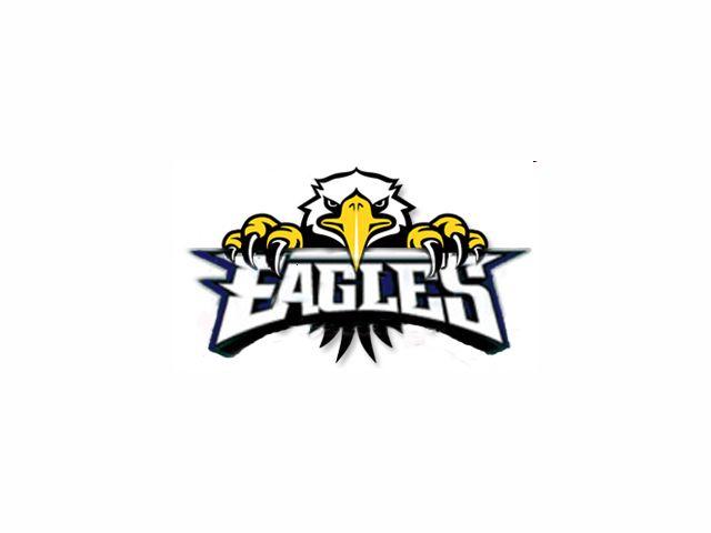 Eagle LogoCool Eagle Logo